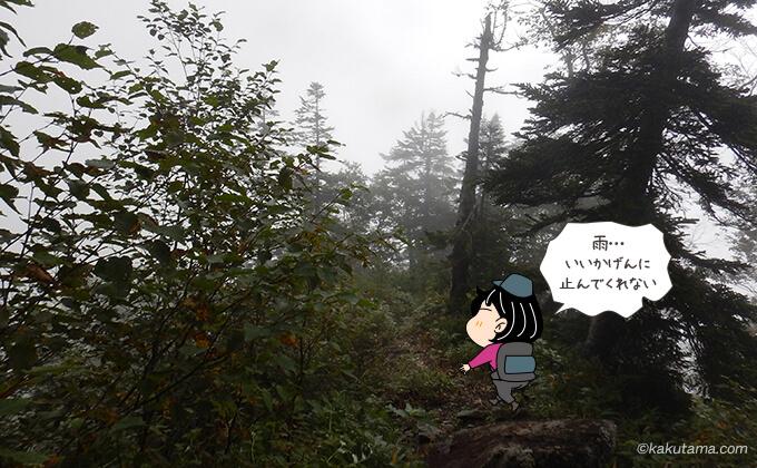 雨がやまない