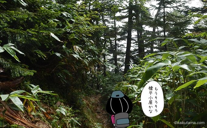 登山道を下る