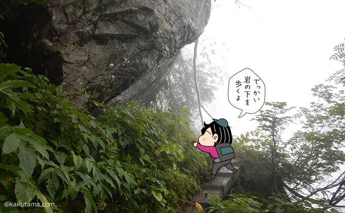 大きい岩と木道