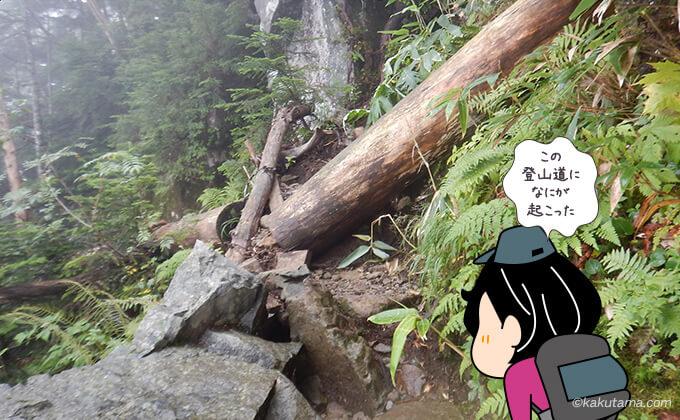 崩壊した登山道