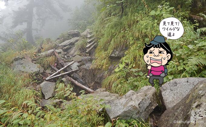 ワイルドな登山道