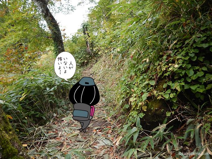 樹林帯を登っていく