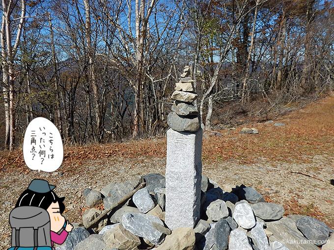 鷹ノ巣山山頂の三角点