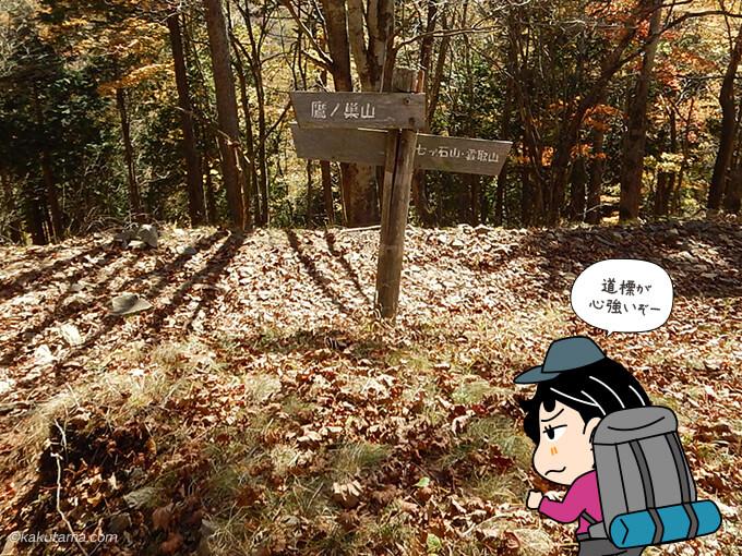 鷹ノ巣山から奥多摩小屋への道標