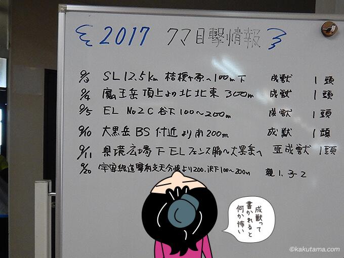 2017年の熊情報