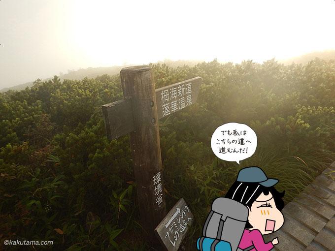 栂海新道への道を歩く
