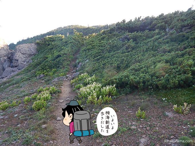 栂海新道入り口から栂海新道を歩く