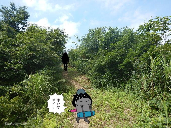 黄連山登山道