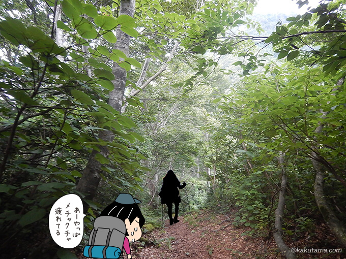 菊石山の登山道