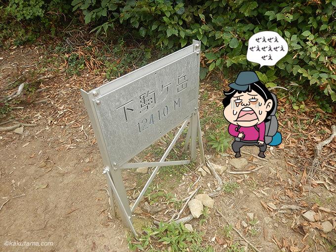 下駒ヶ岳山頂