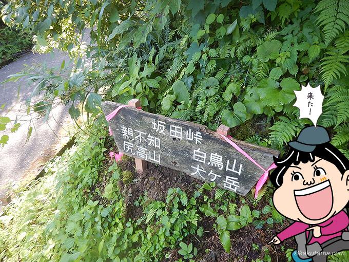 坂田峠まできた
