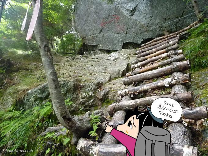 木のハシゴを登る