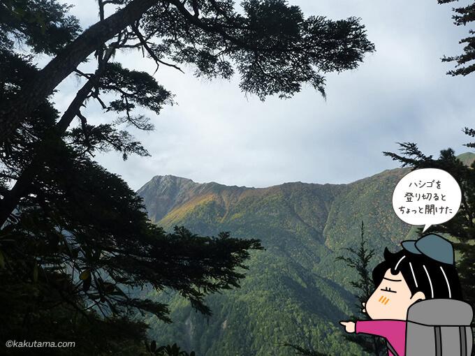 ハシゴを登り切ると北岳が見えた