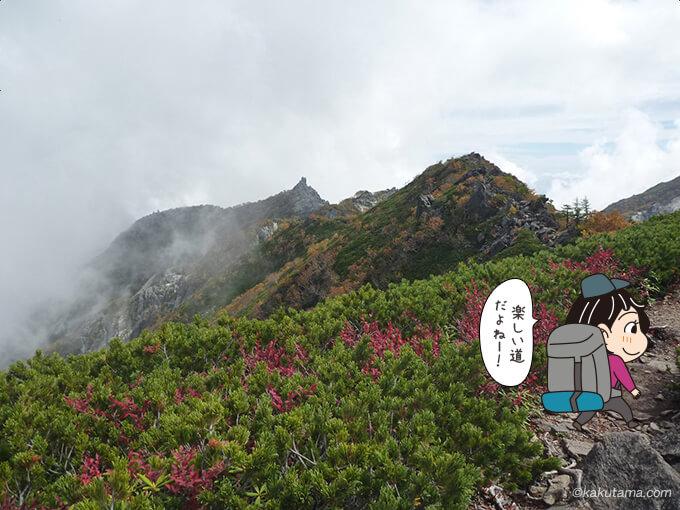 高嶺から見えるオベリスク