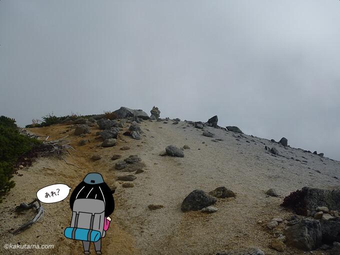 山頂らしき雰囲気