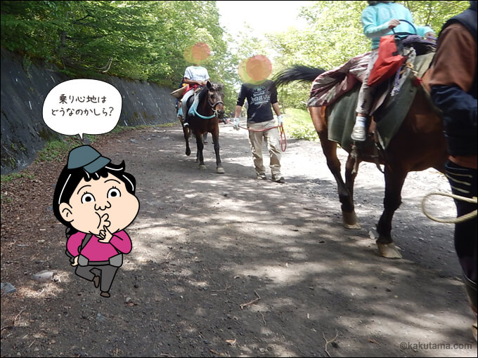 客を乗せて歩く馬