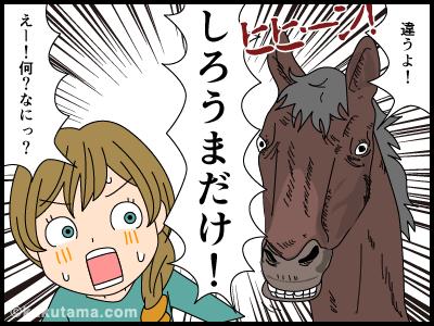 はくばだけではなくしろうまだけと怒る馬の4コマまんが