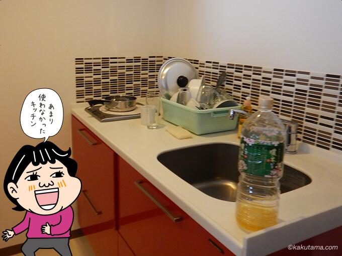 ワン・ニセコ・リゾート・タワーズのキッチン