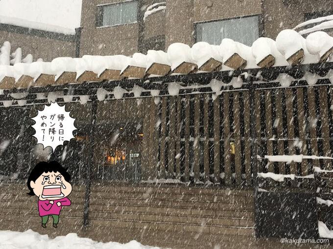 帰る時もガン降りの雪