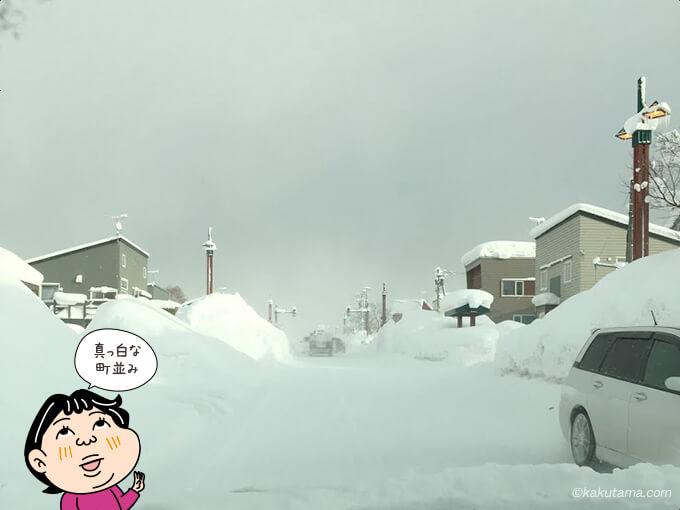 雪で真っ白な世界