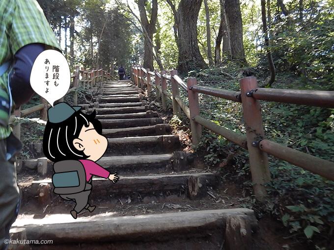 稲荷山コースの階段