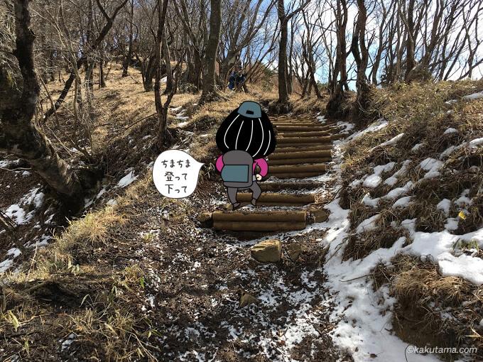 雪の残る階段を登る