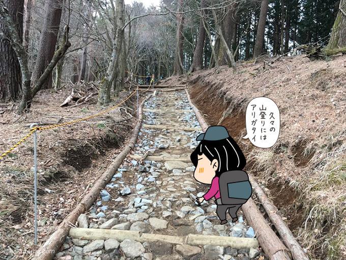 整備された登山道