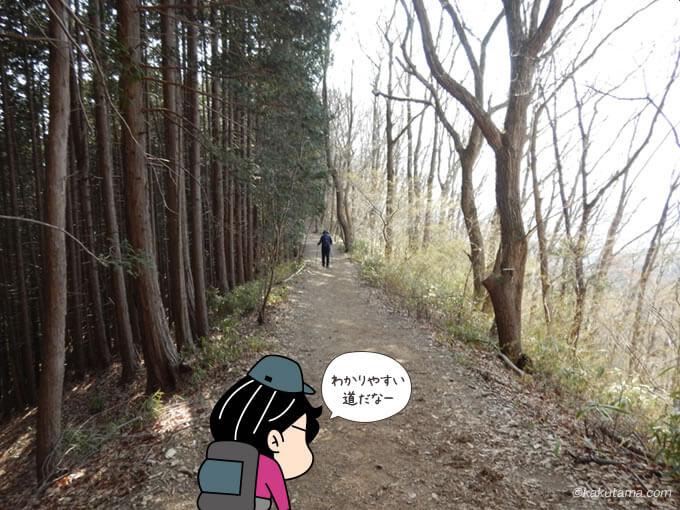 木々に囲まれた道2