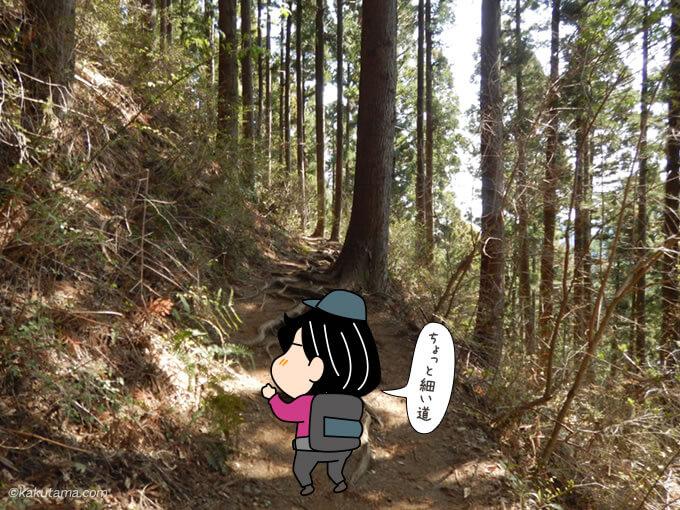 巻道を歩く