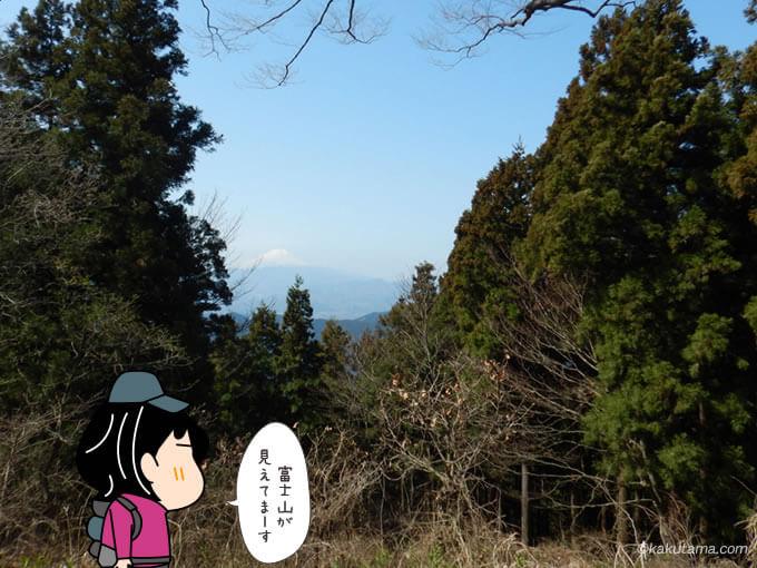 景信山山頂から見る富士山