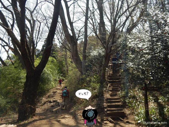 巻道と階段