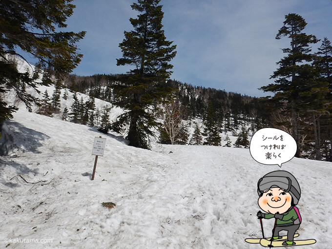 スキーシールが装着しているの歩くのも楽