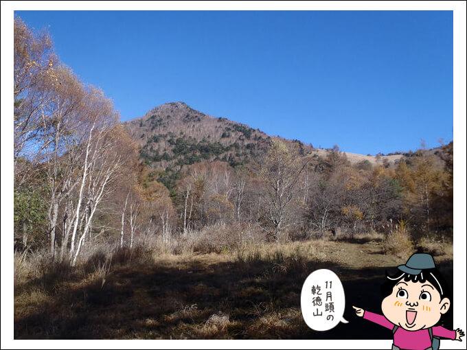 秋の国師ヶ原
