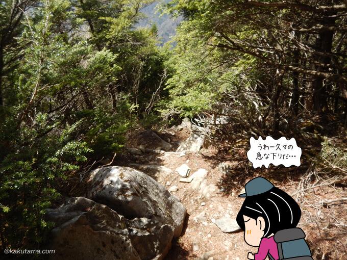 急な下山道