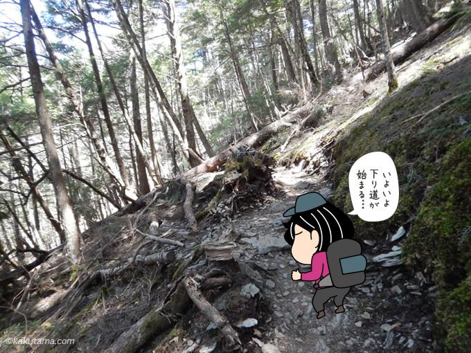富士見平小屋から先は下る