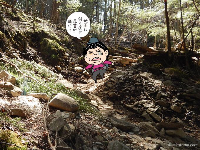 富士見平小屋からの下りが辛い