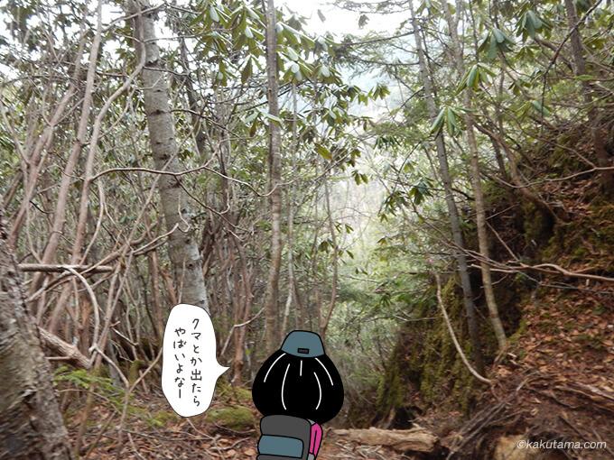 不動滝ルートには誰も居ないので不安になる