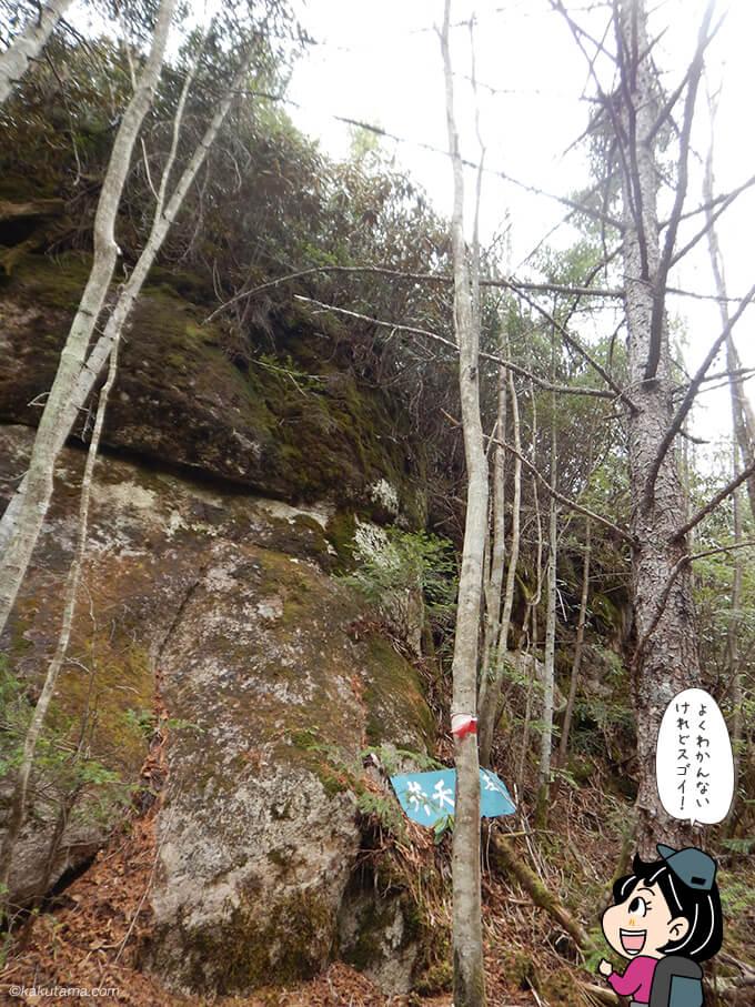 大きい岩が出てきた