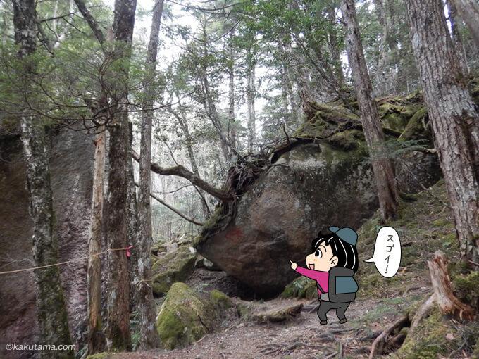 面白い形の大きい岩
