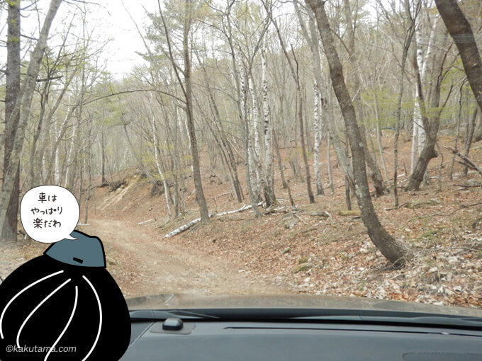林道を車で通過