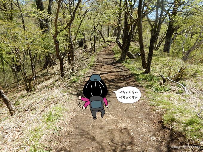 なだらかな登山道を歩く