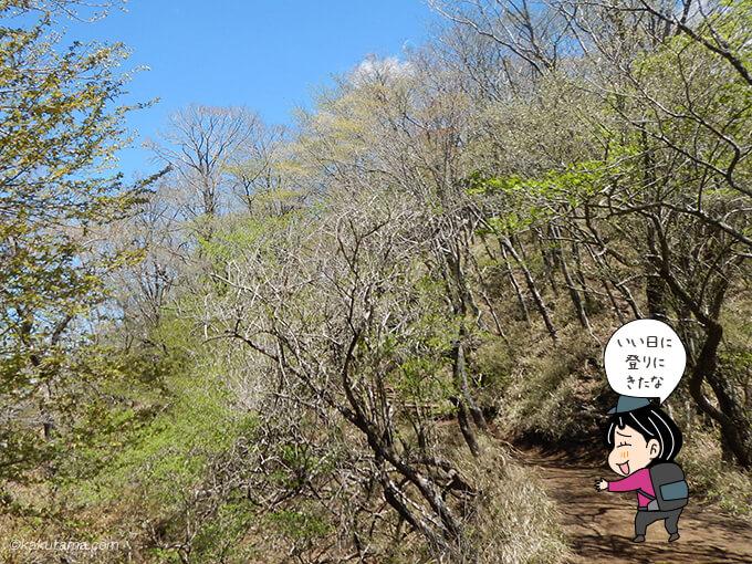 塔ノ岳山頂方面へ歩く
