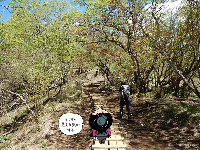 塔ノ岳山頂方面へ歩く2