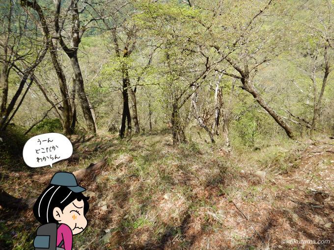 もうどこにあるかもわからない尊仏岩