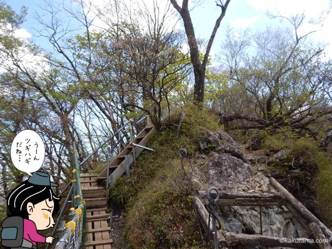 塔ノ岳山頂から下山2