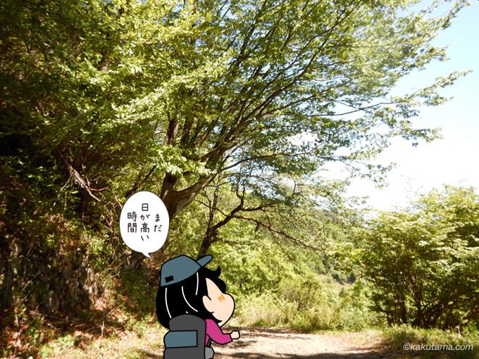 二俣の林道を歩く