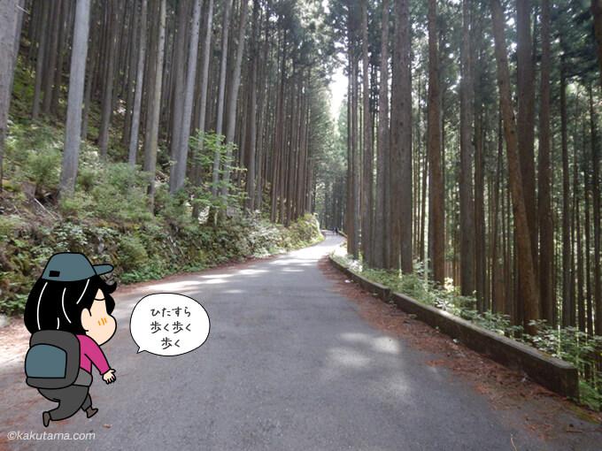 細倉橋までの林道歩き3