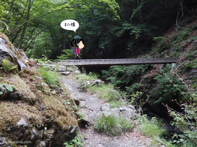 沢の上を渡る橋2