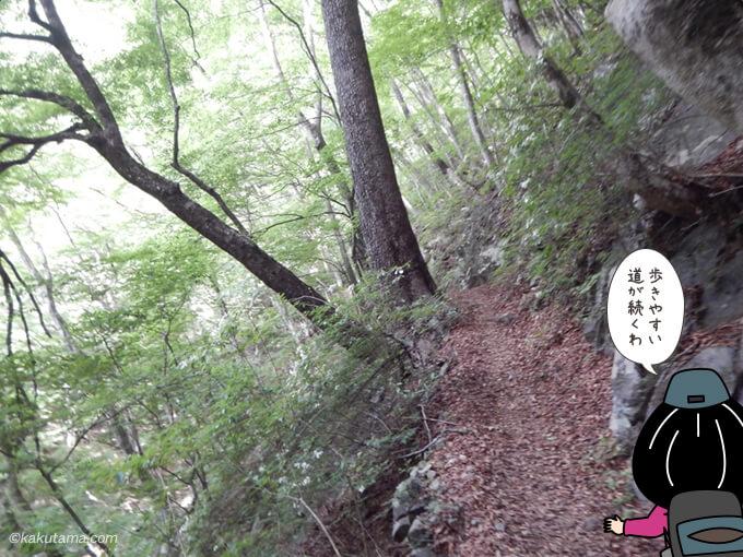 ひたすら樹林帯2