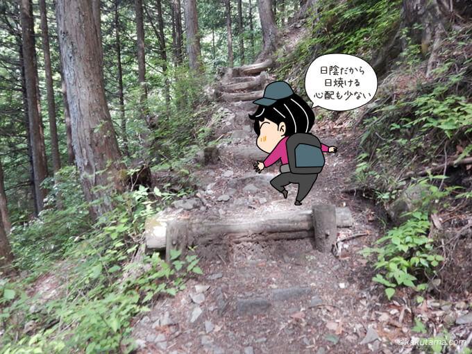 ひたすら樹林帯3
